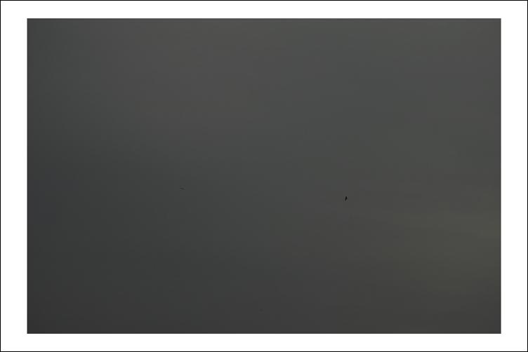 ka82.jpg